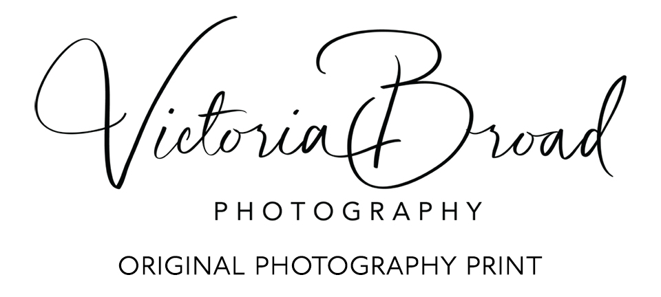 Victoria Broad Photography Print Logo